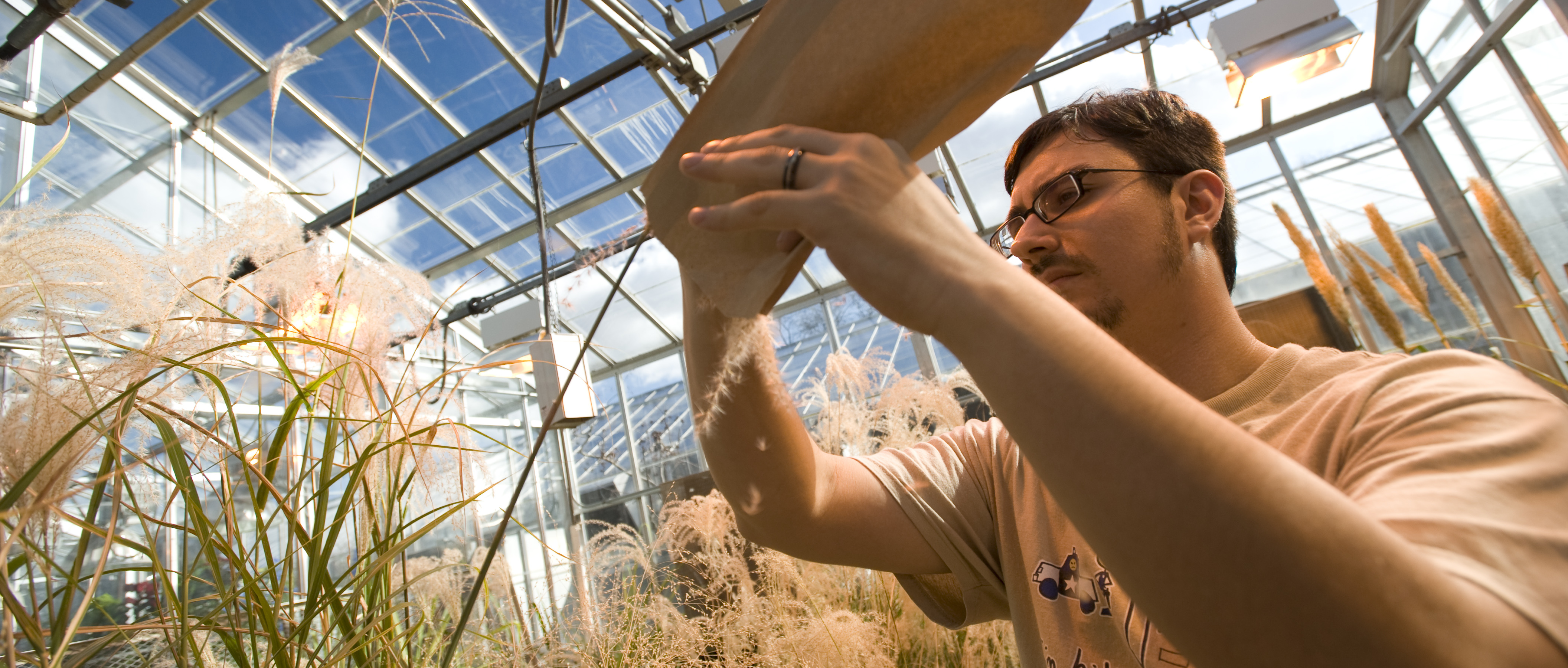 student worker in greenhouse